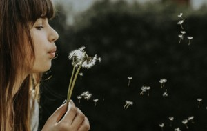 Memory and fragrance, the how and the why